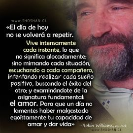 reflexiones_robin_williams